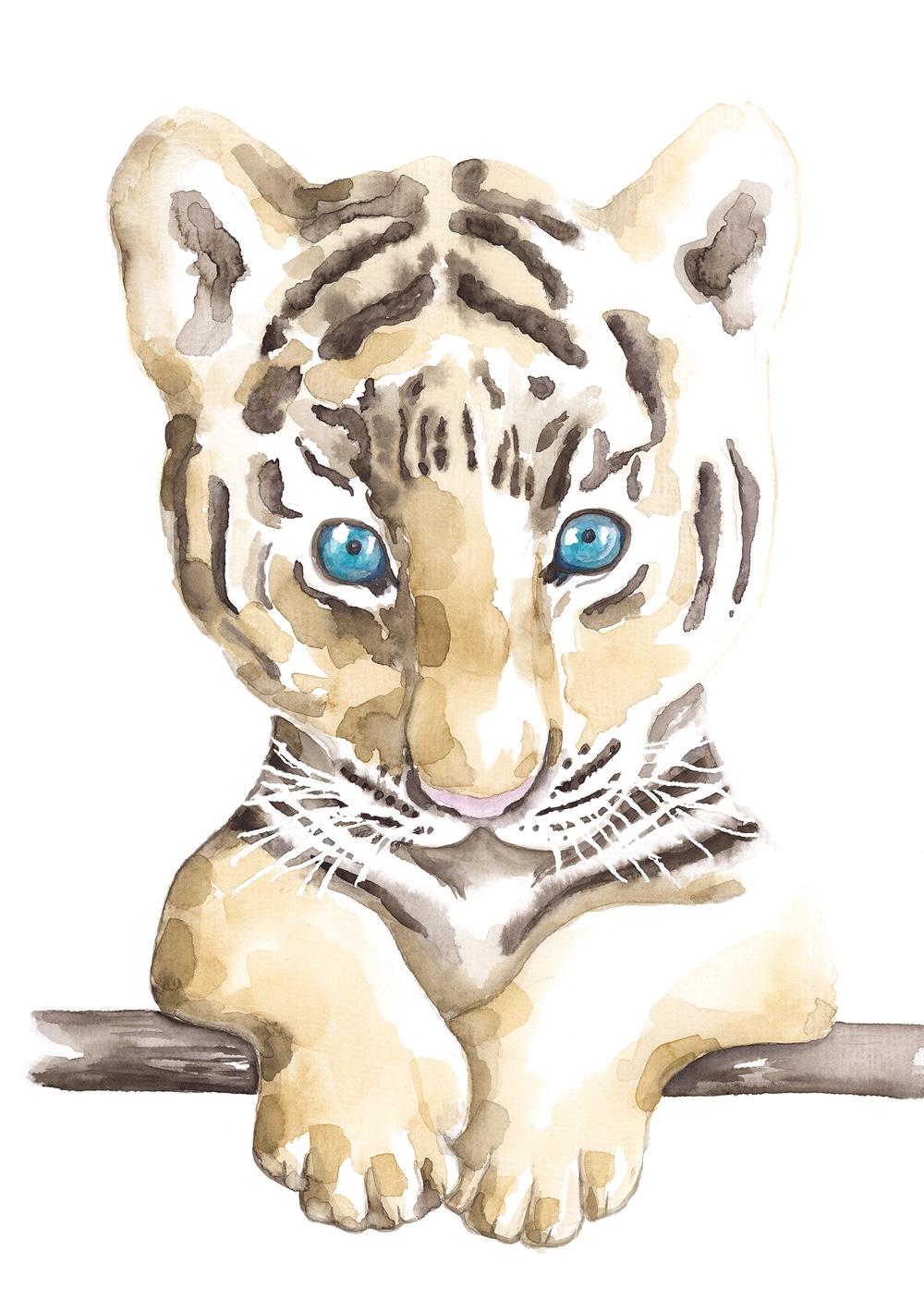 Tiger_A4